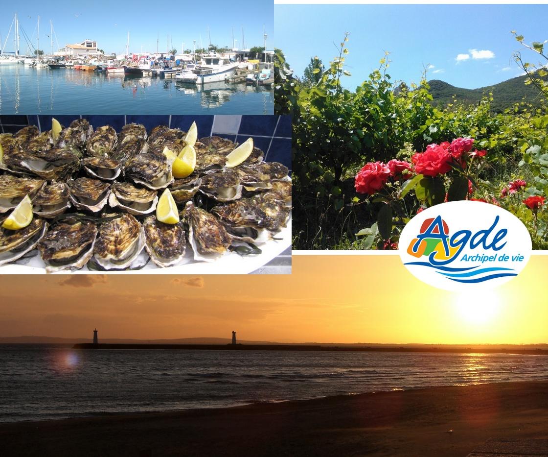 Location gîtes au Grau d'Agde. Couché de soleil à l'embouchure du fleuve Hérault, Gastronomie du terroir: Huîtres de Bouzigues dégustées avec un verre de Picpoul. Petits pêcheurs du Cap d'Agde à l'avant port.